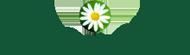 Valérie Touraine, coaching de vie – Tout est en soi Logo